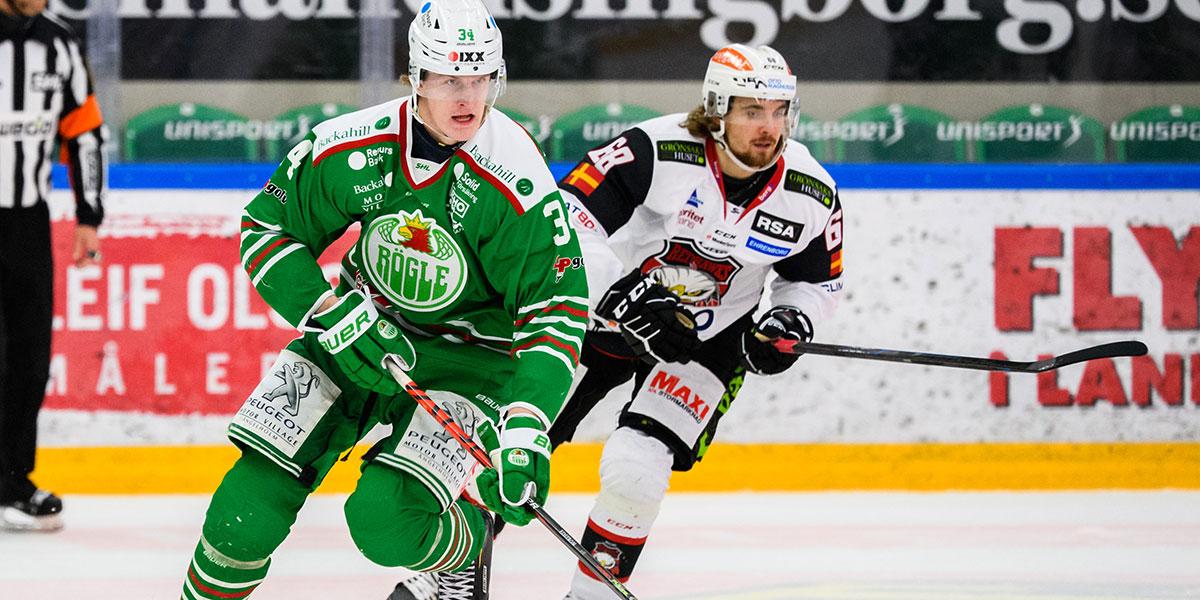 Adam Edström, Rögle BK & Adam Brodecki, Malmö Redhawks